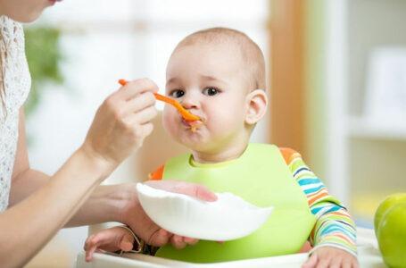10 frutas que não podem faltar na alimentação do seu filho