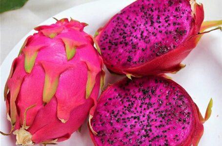 Veja os benefícios da pitaya e por que ela ajuda a emagrecer