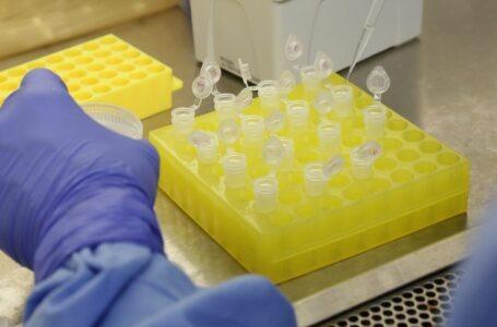 Testes em brasileiros trazidos da China dão negativos para coronavírus