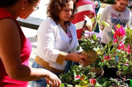 AUTONOMIA | Secretarias incentivam o empreendedorismo feminino