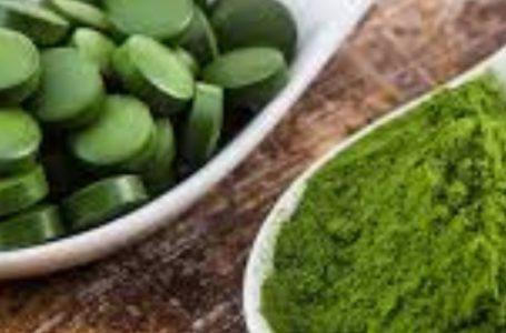 Melhores inibidores de apetite: naturais e de farmácia