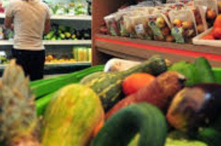 Liberado pagamento das bolsas Alimentação e Alimentação Creche