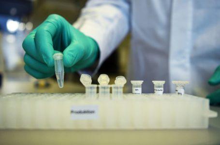 Farmacêuticas GSK e CureVac desenvolvem em conjunto nova vacina