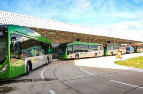 Transporte público recebe 30 ônibus novos