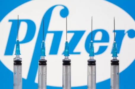Economia disse à Pfizer que compra de vacinas não cabia ao ministério