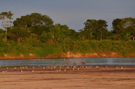 Governo cancela temporada do Rio Araguaia