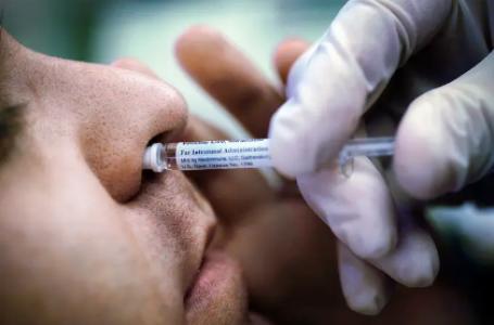 Vacina contra covid por spray nasal: Incor de São Paulo planeja teste
