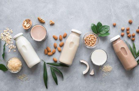 Leite pode ser aliado no combate à osteoporose; saiba mais